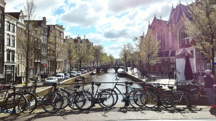 remigratie naar nederland